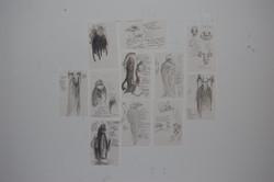 monster (study)