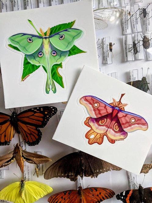 Luna and Silk Moth vinyl stickers