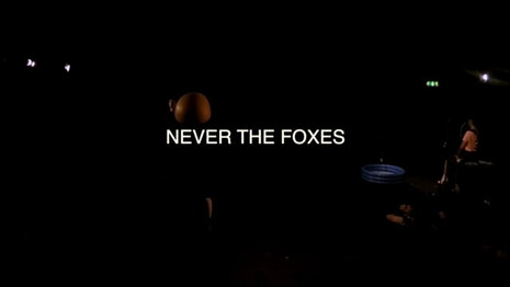 'Never The Foxes'
