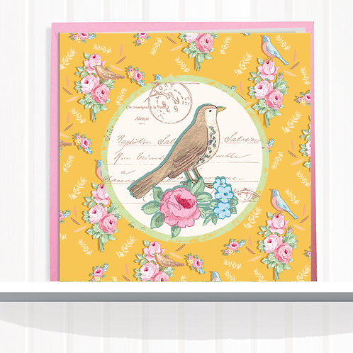 Songbird Range Greeting Card Blank inside set of 6 £6.60