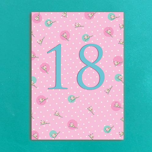 Age Eighteen Postcards set of 12