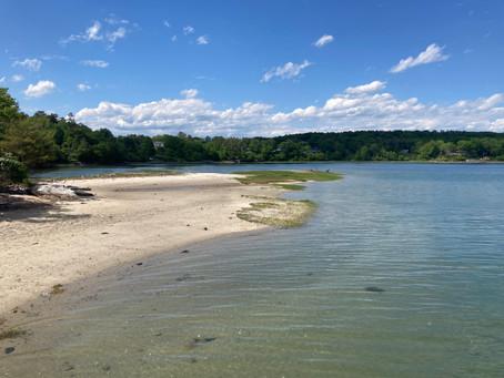 Broad Cove Reserve, Cumberland