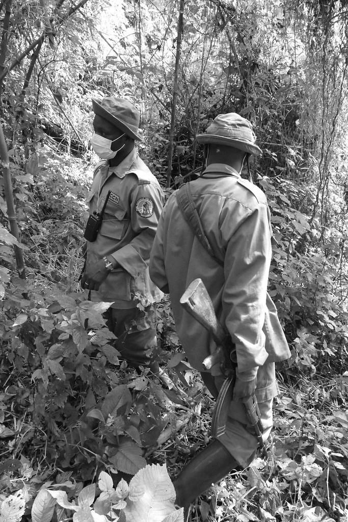 Bewaffnete ICCN-Ranger im Virunga-Park