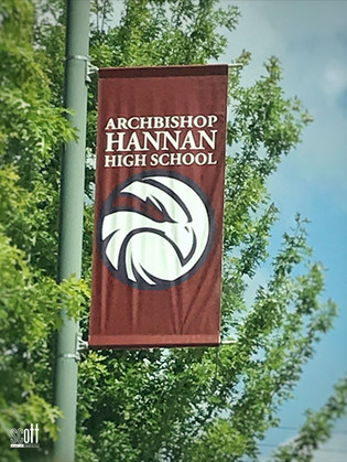 Archbishop Hannan High School - Branding