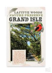 Lafitte Woods Nature Preserve