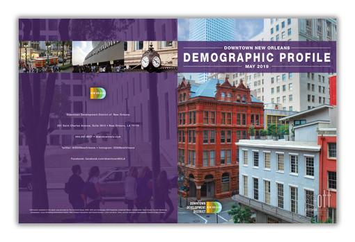 DDD Demographics Profile Book