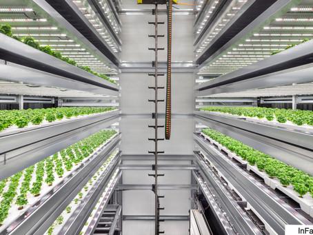 Alimentar al mundo durante todo el año con Foodtech