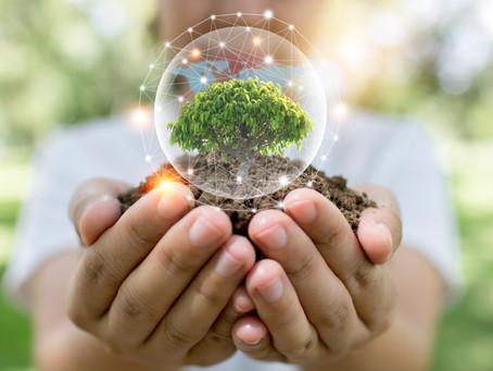 Resiliencia en el sector alimentario: la clave para proteger la biodiversidad