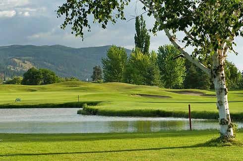 Golf-2038.jpg