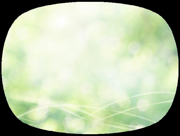 森林浴イメージ