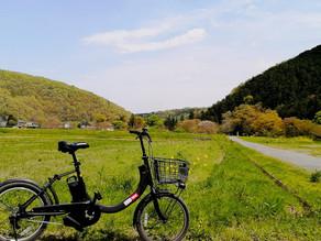 東京近郊の里山、埼玉県小川町のサイクリングツアー始めました!