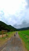 緑に心癒されながらサイクリング(埼玉県小川町)