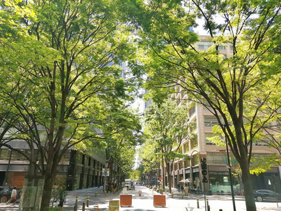 08May.  本日の東京 Today's tokyo