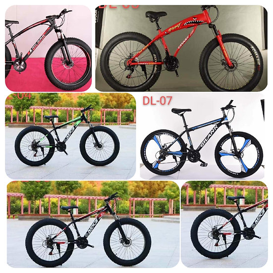 IMPORT_BRANDED_HEAVY_ BICYCLE