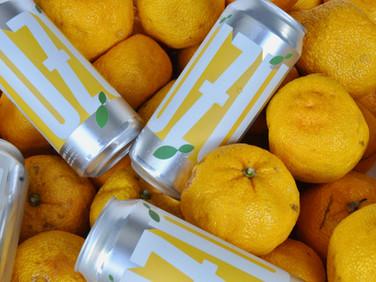 オレゴンの「Shimai Toshi Beer」は間も無く上陸!
