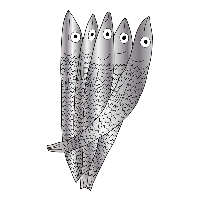 Anchovies