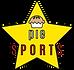 PIE SPORTS logo
