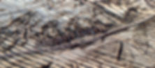 Eagle Colorado Mountain Bike Map