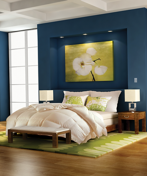 lifestyle_bedroom_blue wall.png