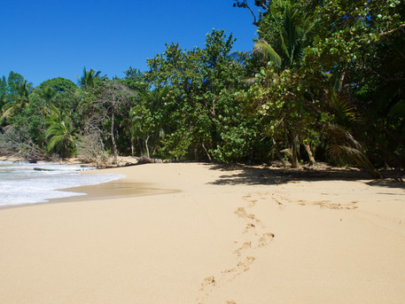 The Best of Costa Rica