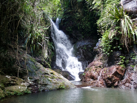 Lamington National Park - Elabana Waterfalls