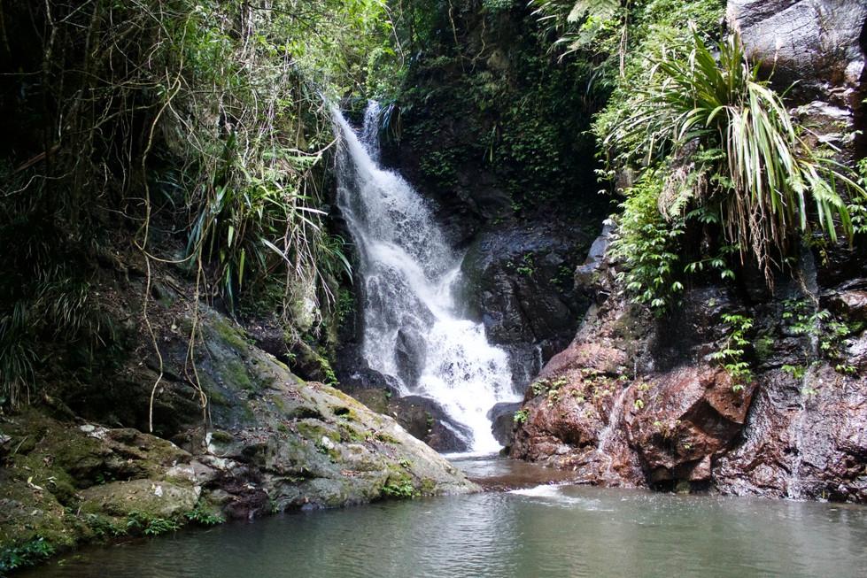 Lamington National Park - Elabana Waterfalls