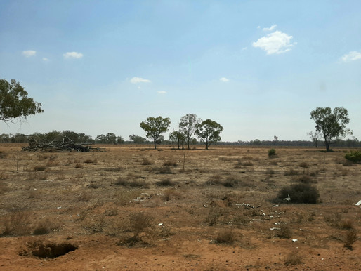 Stories from the Drought