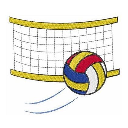 Volleyball & Net
