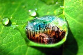 Photomontage Micropolis