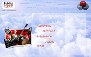 Web design Public Impact.jpg
