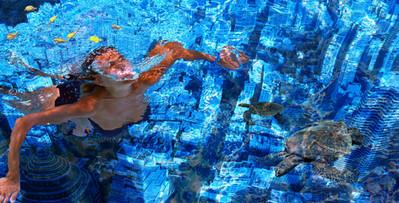 Photomontage Au fond de l'océan