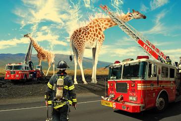 Photomontage Girafes en feu