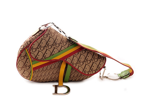 Dior Monogram Rasta Saddle Bag
