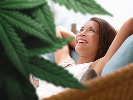 Does CBD Get You High? Will I Fail a Drug Test?