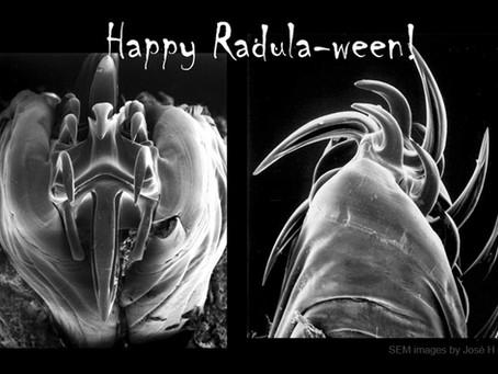 Happy Radula-ween!!