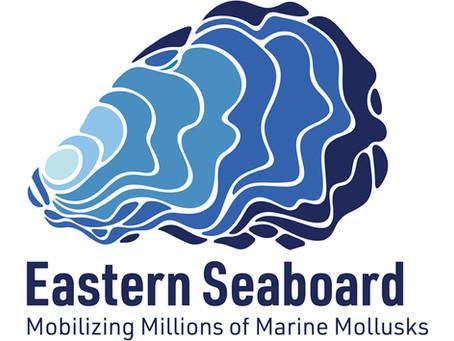 """Eastern Seaboard Mollusks"" in Social Media"