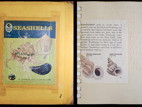 An Inspirational Shell Book