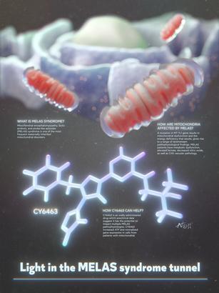 CY6463 Drug - Melas Syndrome