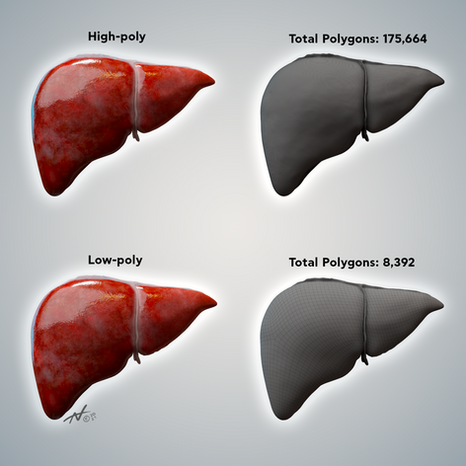 High poly look with low poly model - Liver