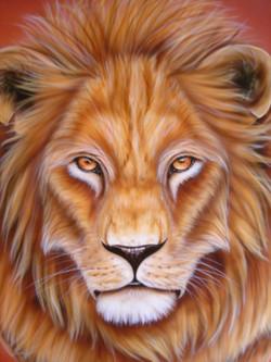 Lion, Mufasa 011.jpg