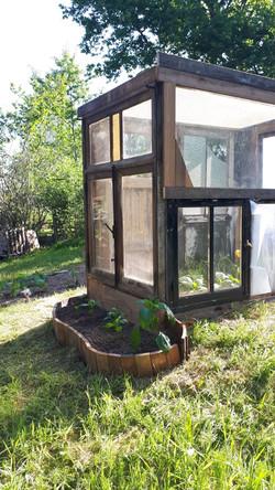 Miniserre gemaakt van oude ramen en deuren