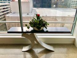 Prayer Plant Bromeliad