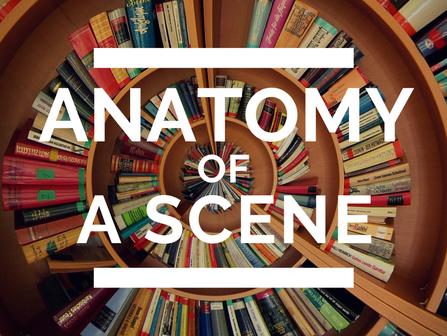 Anatomy of a Scene