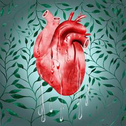 Weeping Heart