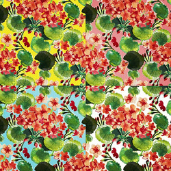 geranium colorway