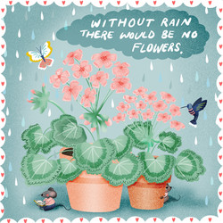 without rain