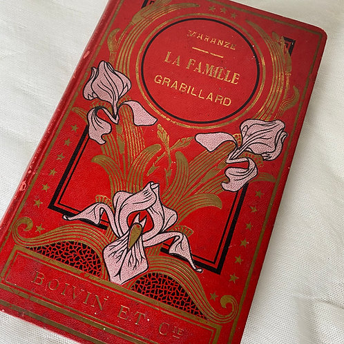 Antique French beautifully decorated  book