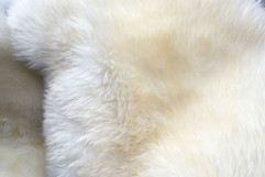 white-colored-Fluffy-Background.Shaggy-fur-texture.-Fur-skins-for-sheepskin-skins-for-inte