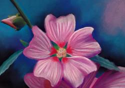 flowerpastel.jpg
