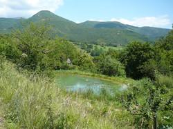 L'étang naturel